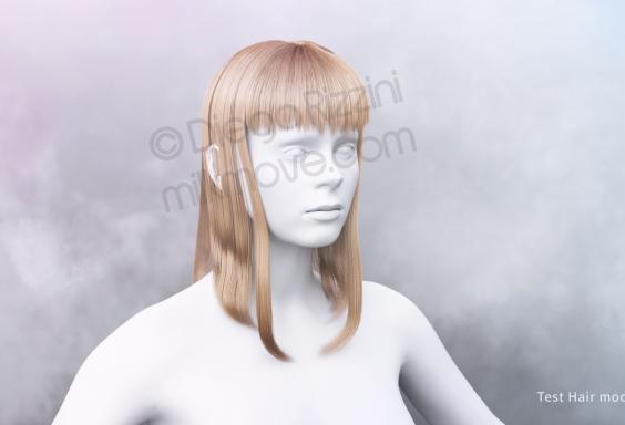 hair_wip_modo